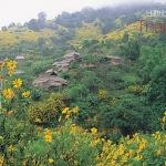 โปสการ์ด หมู่บ้านชาวเขา จังหวัดเชียงราย /วิถีชาวบ้าน/ภูเขา