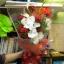 ช่อดอกไม้ 21 thumbnail 1