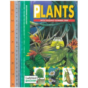 plants with tree
