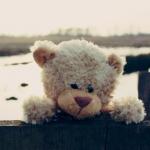 ดูแลพี่ตุ๊กตาหมีให้หอม สะอาด น่ากอดตลอดเวลา