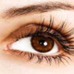 ขนตาปลอม / กาวติดขนตา