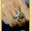แหวนนาควิรูปักษ์