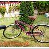 จักรยานครุยเซอร์ 17-01-57